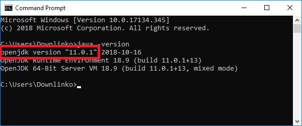 jdk 11 version output